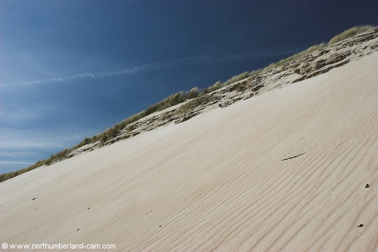 Very steep sand dunes at the north end of Beadnell Bay.