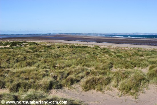 Beach on the north coast of Holy Island.