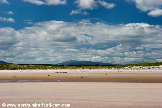View of The Cheviot from the beach.