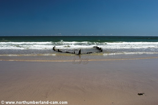 Shipwreck uncovered at low tide.