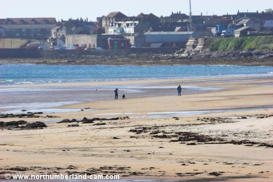 View along the beach at St. Aidan's Dunes to Seahouses village and harbour.