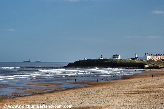 Seaton Sluice Beach seen from the dunes.